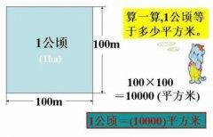 一公顷等于多少平方米及一亩等于多少平方米?面积单位换算公式